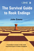 The Survival Guide to Rook Endings